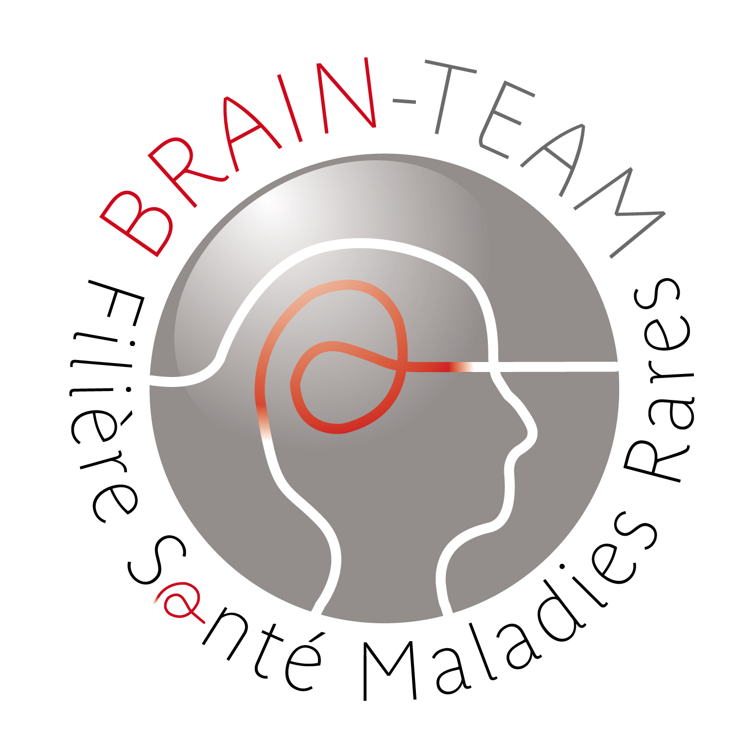 Logo Filière Brain Team